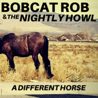 A Different Horse Cover Art